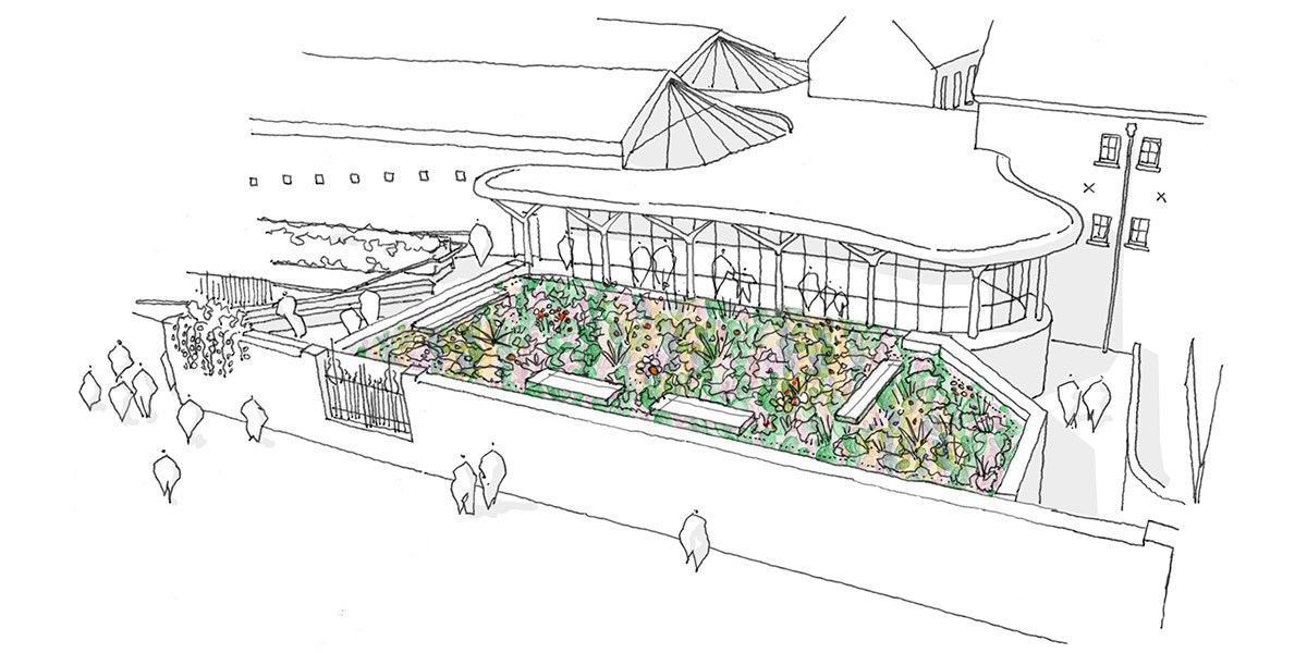 Drawing of the green roof © Wright & Wright Architects